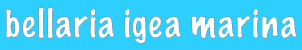 info hotel bellaria igea marina